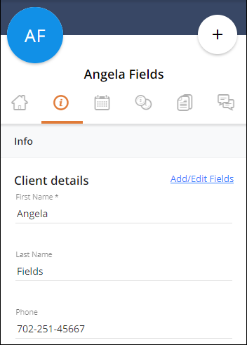 AuxiliaryClientCard_InfoTab.png